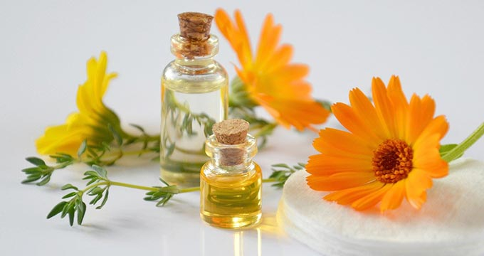 Bringing Traditional and Complementary Medicine Together
